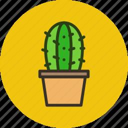 cactus, decoration, home, nature, plant, pot icon