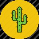 cactus, desert, plant icon