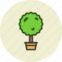 decoration, home, nature, plant, tree icon