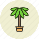 decoration, home, nature, palm, plant icon