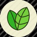 bio, eco, ecology, environment, green, leaves