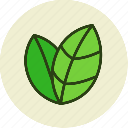 bio, eco, ecology, environment, green, leaf, leaves, nature icon