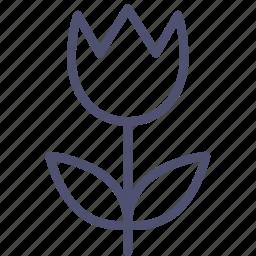 flower, nature, present, tulip icon