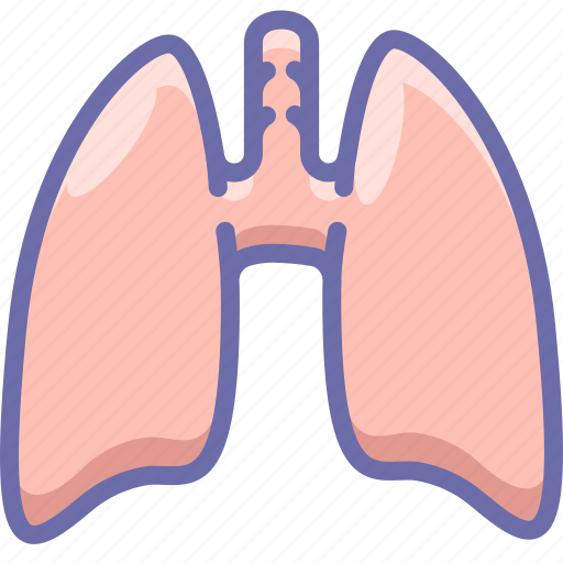 anatomy, lungs icon