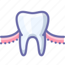 gum, teeth, tooth icon