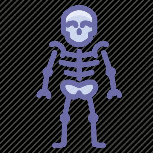 anatomy, skeleton, skull icon