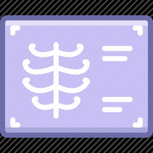 chest, ribs, xray icon