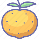 citrus, fruit, mandarine icon