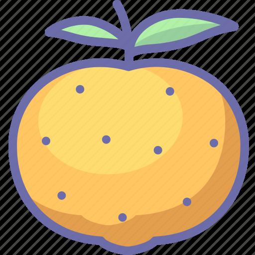 citrus, fruit, mandarine icon