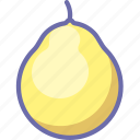 fruit, pomelo icon