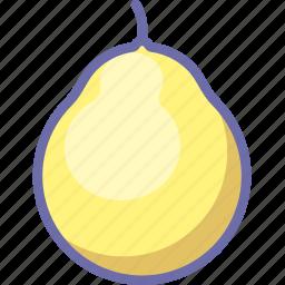 fruit, pomelo icon