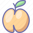 fruit, peach icon