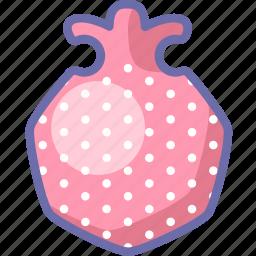 granate, pomegranate icon