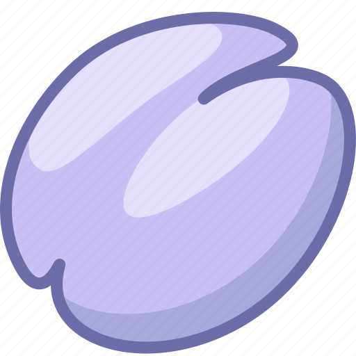 fruit, plum icon