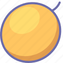 food, melon icon