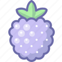 berry, raspberry icon