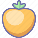 fruit, persimmon icon