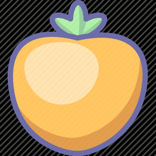 fruit, persimmon icon