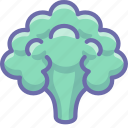 cauliflower, vegetable icon