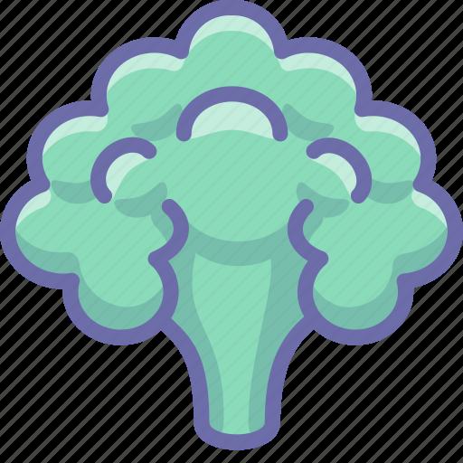 cauliflower, vegetable icon