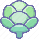 cabbage, salad, vegetable icon