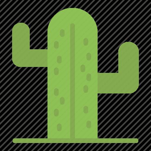 american, cactus, plent, usa icon