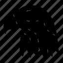 animal, bird, eagle, usa icon