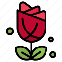 flower, imerican, plent, usa icon