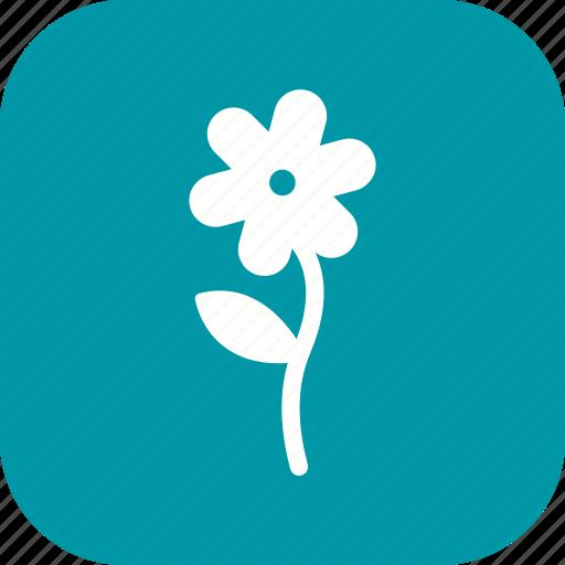 Floral, flower, plant icon - Download on Iconfinder