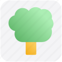 arbor, eco, ecology, nature, summer, tree icon