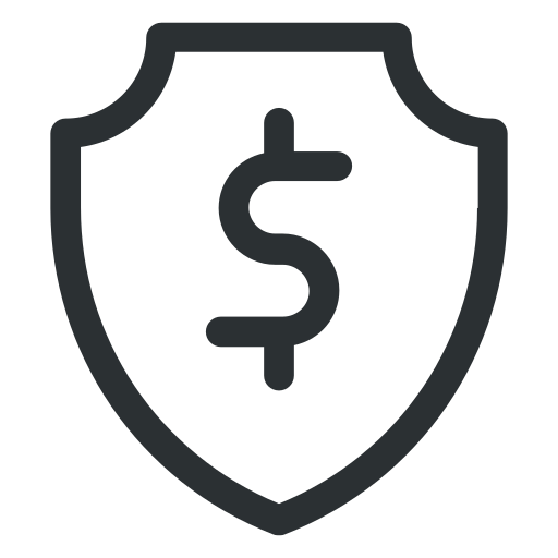 dollar shield, dollars with shield, financial protection, money protection icon icon