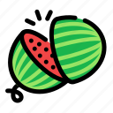 chop, cooking, food, fruit, slice, watermelon icon