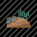 cactus, desert, nature, wasteland, western icon
