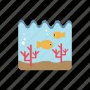 aquatic life, corals, fishs, ocean, undersea