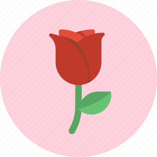 floral, flower, love, red rose, romantic, rose, valentine icon