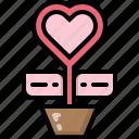 decoration, flora, gift, heart, pot, tree, valentines icon