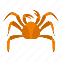 animal, claw, crab, ocean, orange, sea, seafood icon