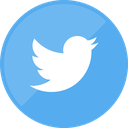 social media, twitter, website icon