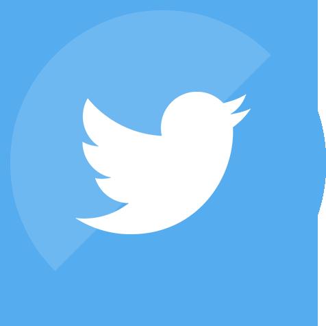 social media, twitter, website icon