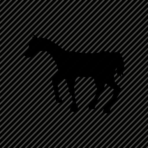 animal, bird, dog, horse, pet icon