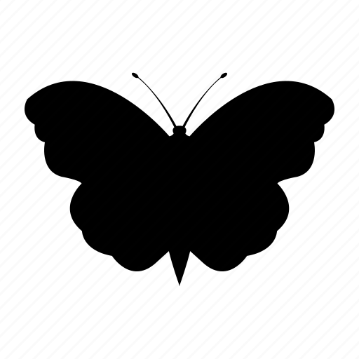 bacteria, bug, butterfly, insect, nature, virus icon