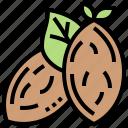 almond, fruit, natural, nut, organic