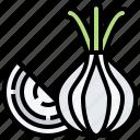 food, ingredient, onion, organic, vegetable