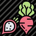 fresh, ingredient, natural, radish, salad icon