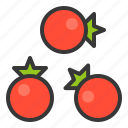 food, healthy, tomato, tomatoes, vegan, vegetable, vegetarian