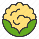 cauliflower, food, healthy, vegan, vegetable, vegetarian icon