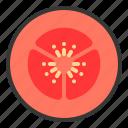 food, healthy, tomato slice, vegan, vegetable, vegetarian icon