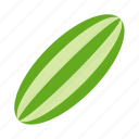 cucumber, food, healthy, vegan, vegetable, vegetarian icon