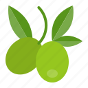 food, healthy, olive, vegan, vegetable, vegetarian icon