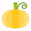 food, healthy, pumpkin, vegan, vegetable, vegetarian icon